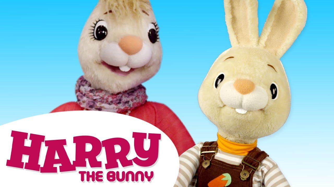 مجموعه Harry The Bunny